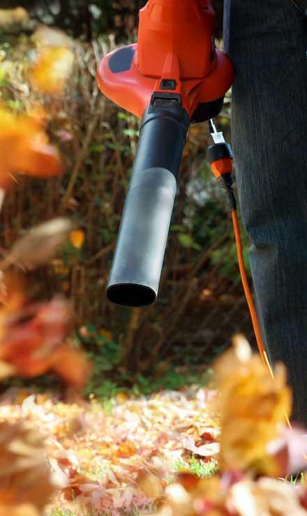 Perkins Landscaping  Leaf Removal