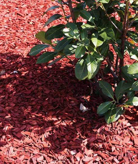 Perkins Landscaping  Mulching
